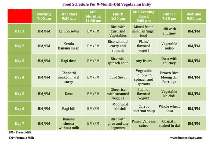 15 Month Old Diet Schedules - dubaigala