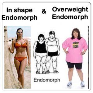 Diet Plan For Endomorph Body Type - Diet Plan