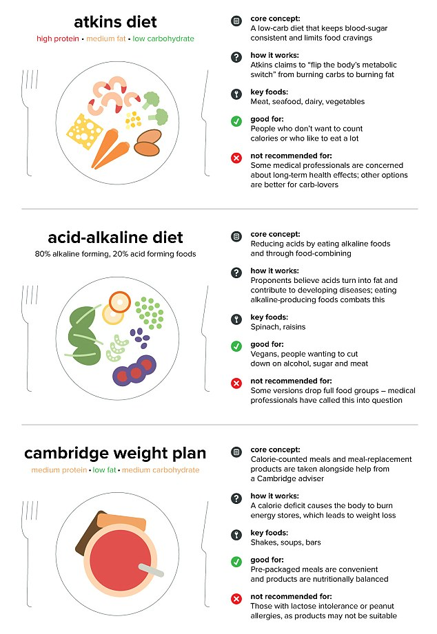 Foods Allowed On A No Carb Diet