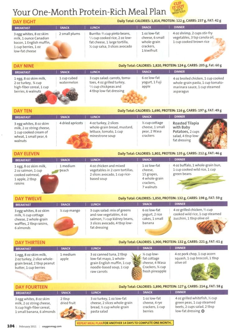 3 Week Diet Pdf Agipeadosencolombia Opalskyviewthuducfo Image Collections
