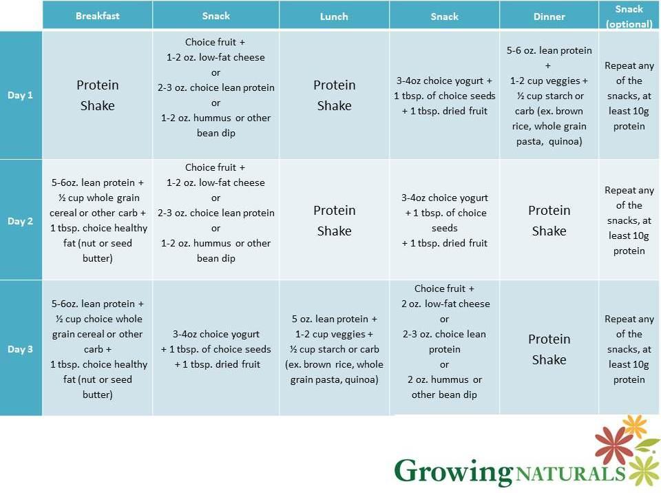 Protein Diet Plan Results