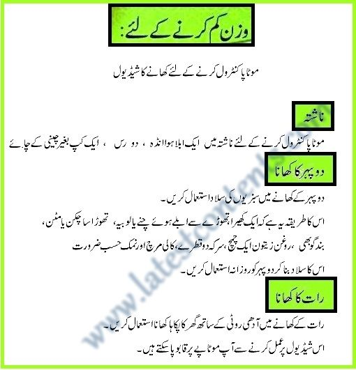 Protein Diet Plan Urdu