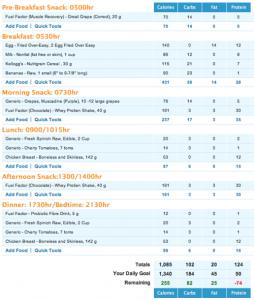high protein vegan meal plan pdf