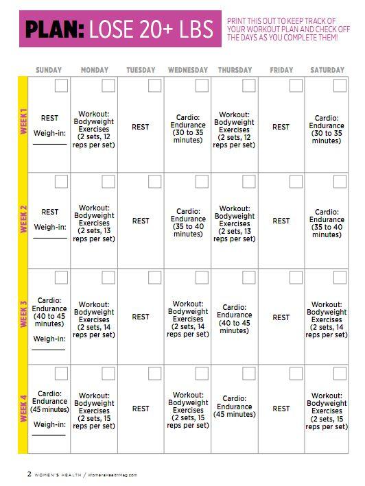 6 Month Workout Plan To Lose Weight Dess