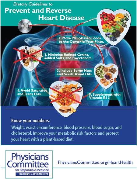 Diet After Heart Attack