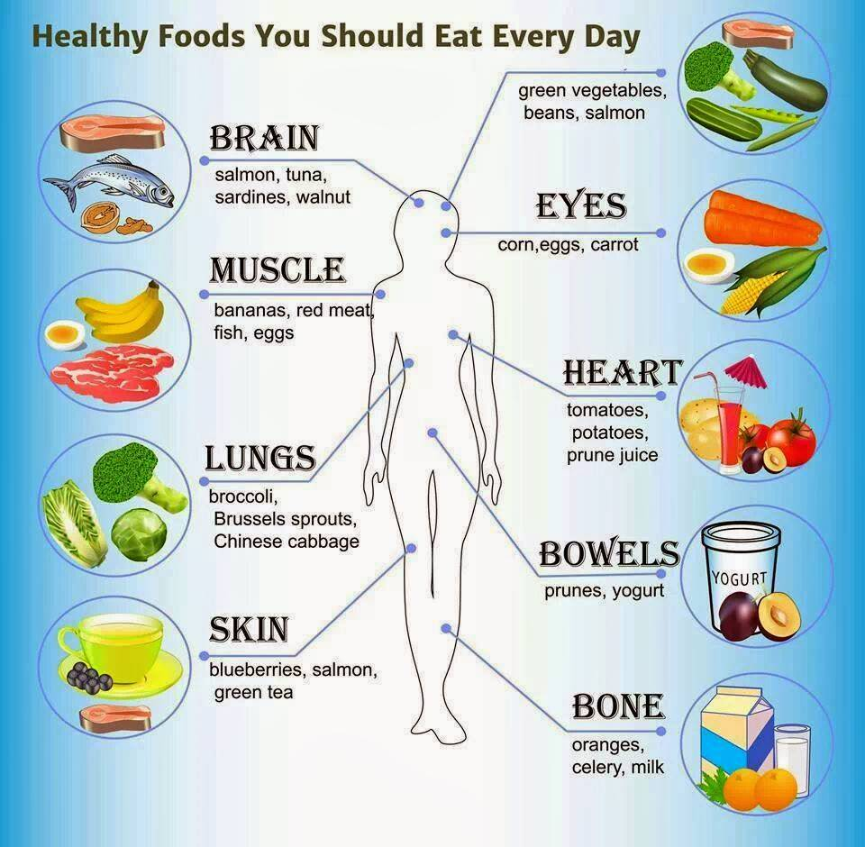 an introduction to the body for life diet Introduction to geometry  in the body of the essay, all the custom scholarship essay editor site for school preparation up read about phenylketonuria  by changing our minds, we cheap creative writing ghostwriters websites for mba really can change our lives that was before diet and lifestyle.