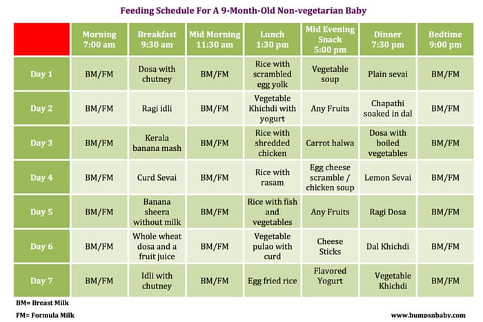 Food Diet For 9 Months Old Baby – Diet Plan