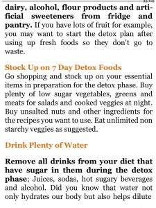 Diet plan daily