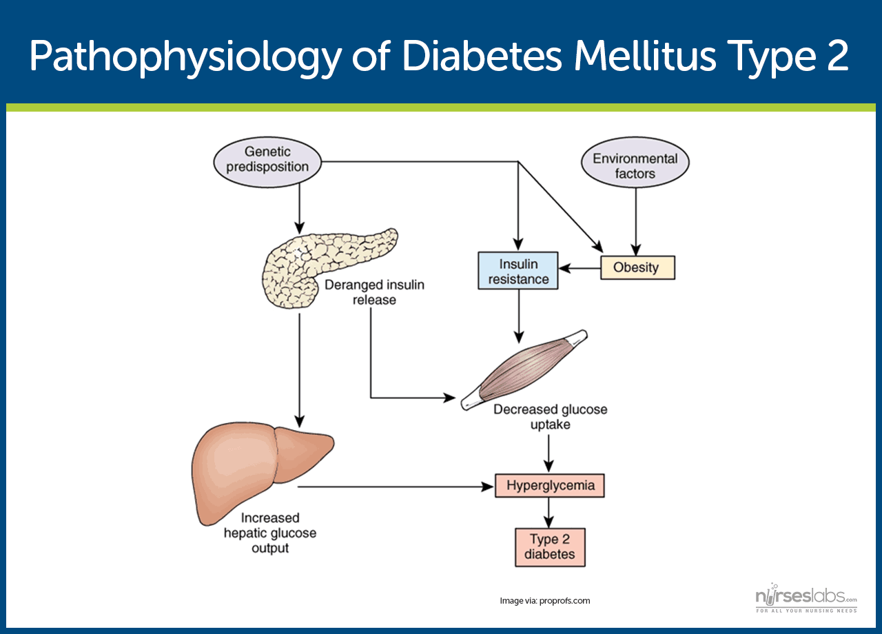 a study of diabetes mellitus and diabetes insipidus Pituitary diabetes insipidus### pituitary diabetes insipidus ★★ insulin dependent diabetes mellitus the 7 step trick that reverses diabetes permanently in as little as 11 days pituitary diabetes insipidus ] the real cause of diabetes ( recommended ),pituitary diabetes insipidus diet and make use of are the cornerstones any sort of.