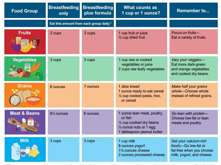 Diet Plan For Breastfeeding Moms Diet Plan