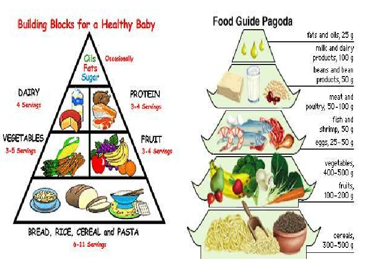 Diet During Pregnancy Of 4th Month
