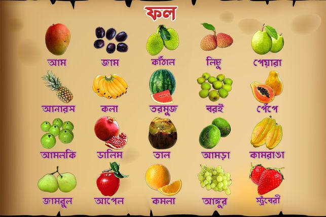 diet pregnant Healthy